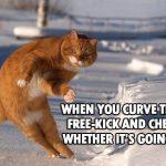 cat-football-soccer-meme-curved-free-kick-catinho