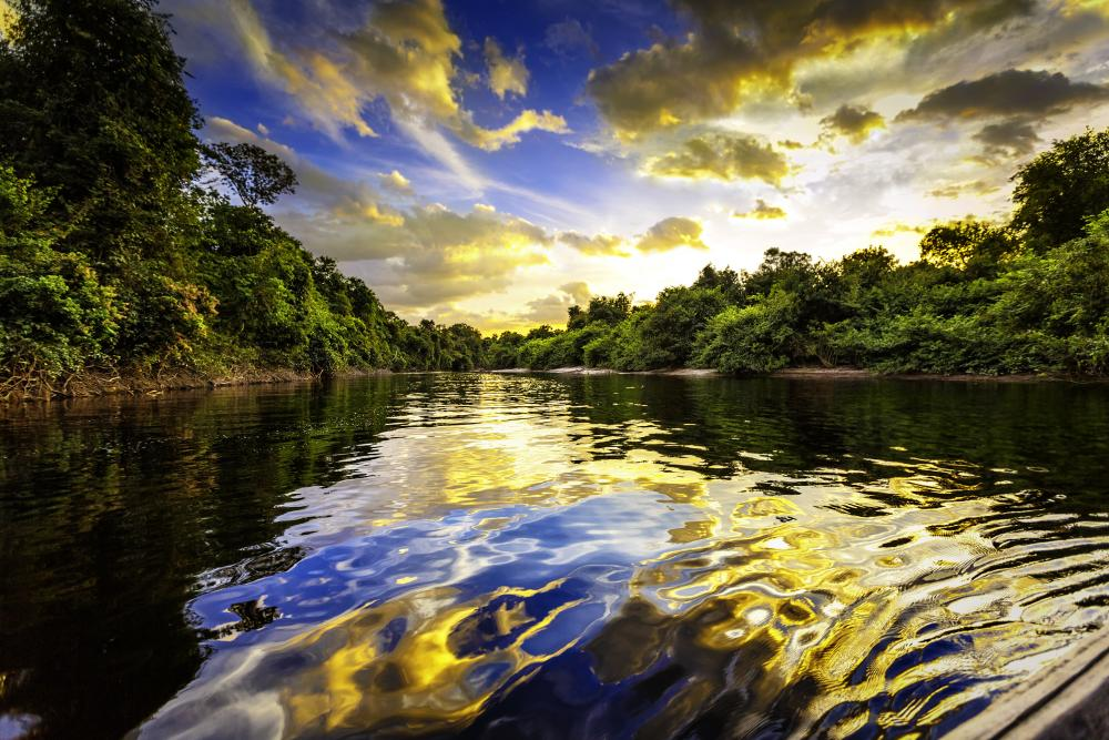 peru-amazon-rainforest